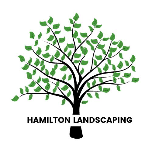 Nicolas DeSarno - HAMILTON LANDSCAPING LOGO